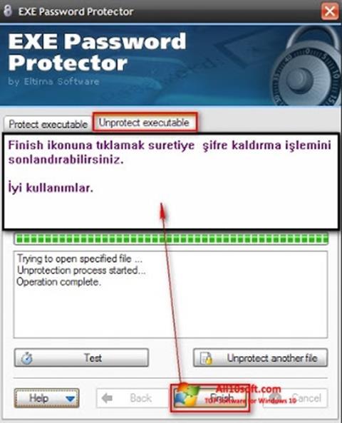 Skærmbillede EXE Password Windows 10